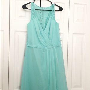 David's Bridal bridesmaid dress. Spa.